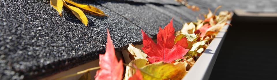 dakgoten met bladeren